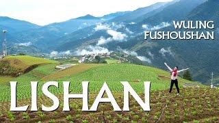 🌄{Trip} Taiwan Travel -- LISHAN, WULING & FUSHOUSHAN FARM 3-Day Trip (李山/武陵農場/福壽山農場)