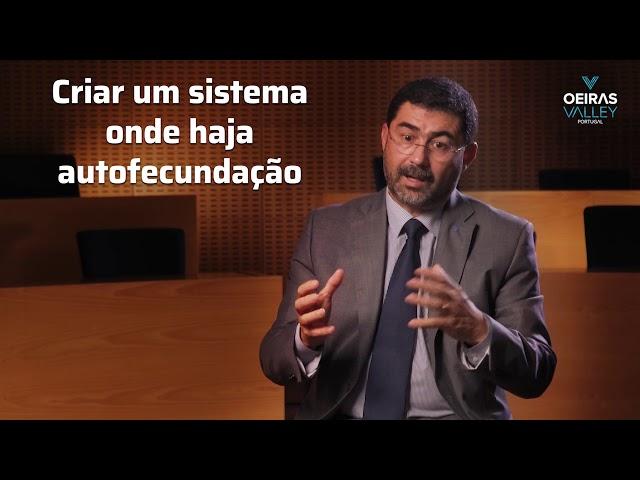 Oeiras Valley | Entrevista Prof. Rogério Colaço (Presidente IST) | Parte II
