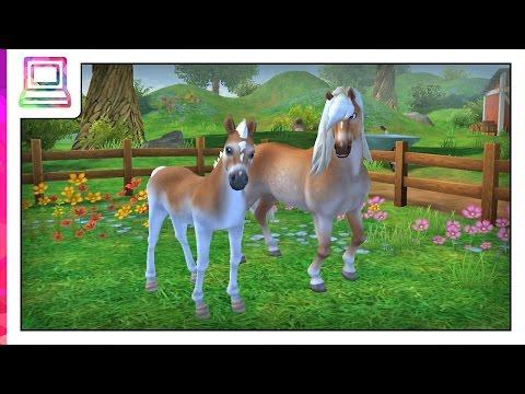 Star Stable Horses - My Haflinger Horse Evolution (Horse Game)