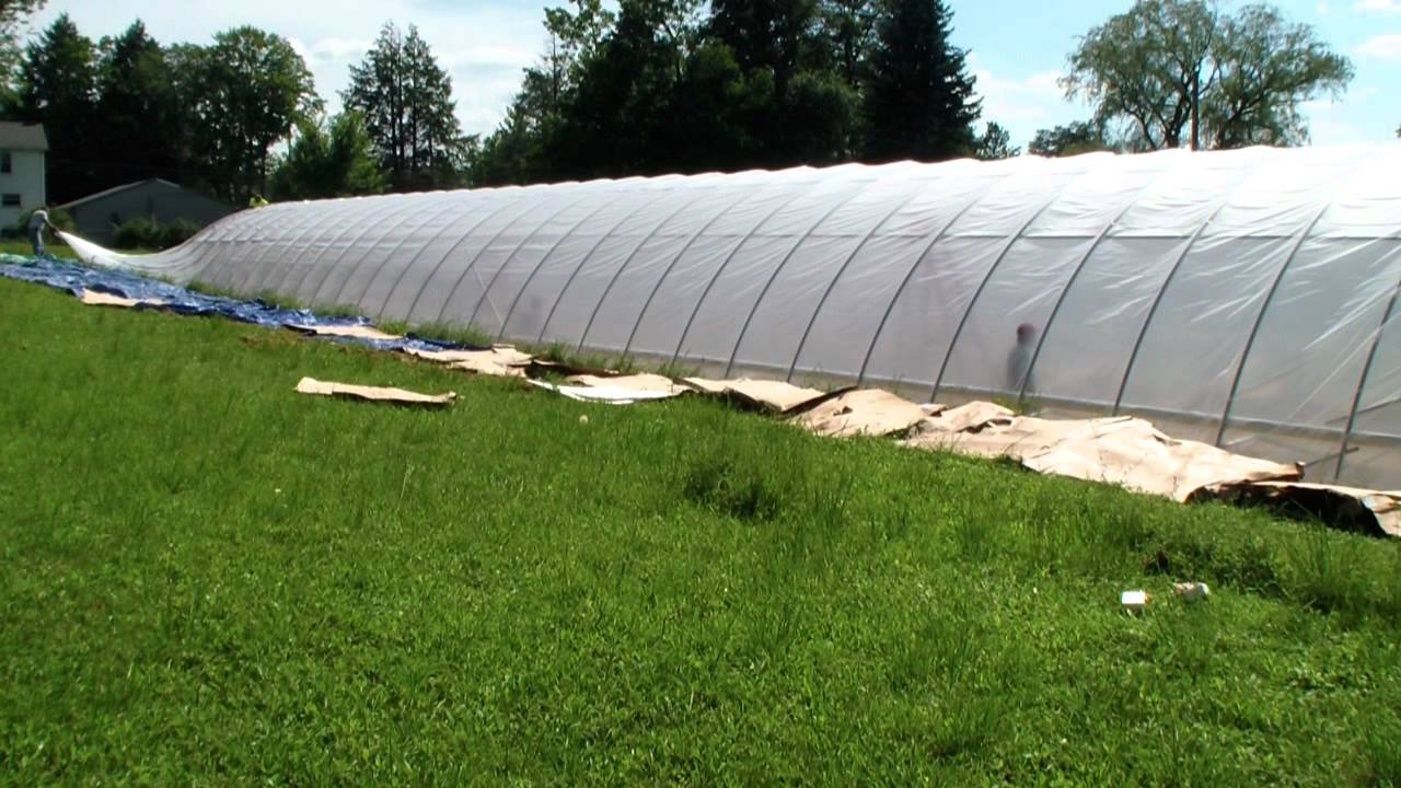Greenhouse 6 Mil Plastic