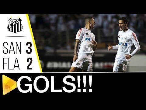Santos 3 x 2 Flamengo | GOLS | Brasileirão (02/08/17)