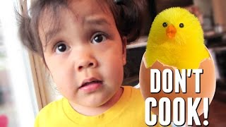 DON'T COOK THE EGGS! - May 11, 2017 -  ItsJudysLife Vlogs