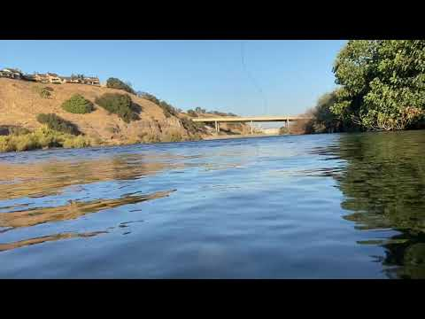 Monster Salmon Fishing At American River Part 3