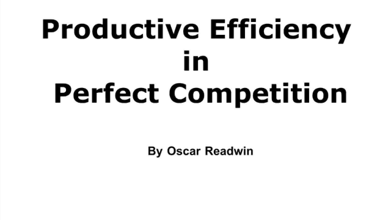 productive efficiency in perfect competition