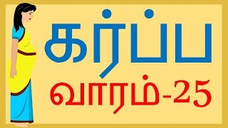 Pregnancy | Tamil | Week by Week | Week 25 | வாரம் 25