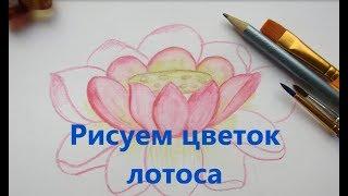 Как нарисовать розовый лотос. Рисуем акварельными карандашами
