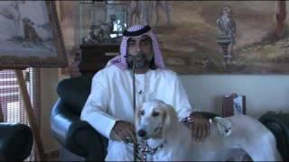 The Arabian Saluki Center