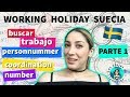 Cómo aprender sueco GRATIS en Suecia  Working Holiday