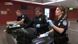 Documentary |  JFK Airport - Colombian