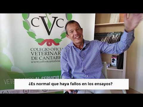 Entrevista con Alfonso Raffin impulsor del proyecto Hi Cov Project