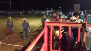Ryan Rought 9/19/15 - 75 point ride peewee bull no. 43