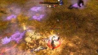 GuildWars 2 : event fin deuxieme stress test