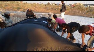 اخبار عربية | لماذا يخسر داعش الموصل؟