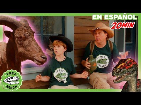 Parque De T-Rex |  Dinosaurio Gigante Vs Mascota Misteriosa Con Parque Zoológico