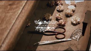 Dry and Myrtille | Fleuriste compositions de fleurs séchées | Landy Production