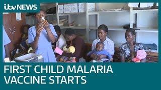 Malawi starts 'landmark' pilot of first ever child malaria vaccine | ITV News
