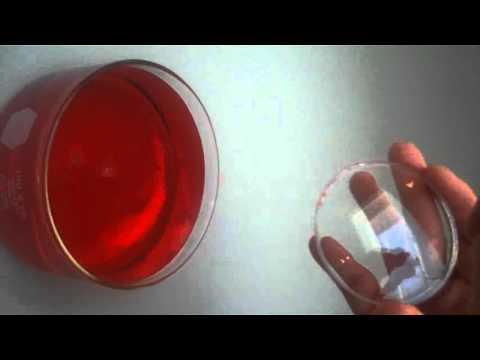Oleophobic coating on an optical lens