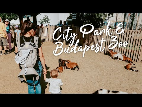 Download City Park & Budapest Zoo