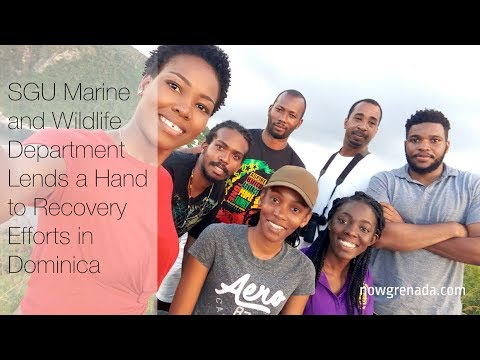 SGU Marine and Wildlife Department Lends a Hand to Recovery Efforts in Dominica