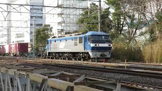 JR貨物・EF210形藤沢駅西側東側(Japan Freight Railway)