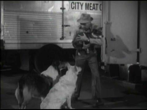 "Lassie - Episode #381 - ""Trouble Below Zero"" - Season 11, Ep. 29 - 04/04/196519"
