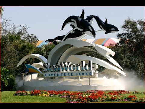 Visiting SeaWorld Orlando, Theme Park in Orlando, Florida, United States