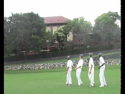 Cricket Parody Video.m4v