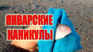 Рыбалка в море в январе Турция 2021