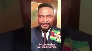 Nelson Chamisa is against women: Divine Mafa
