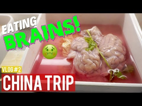 EATING BRAINS?! | China Travel Vlog #2 | Chengdu, Sichuan