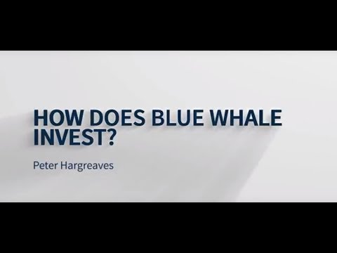 Peter Hargreaves I How Does Blue Whale Capital Invest?