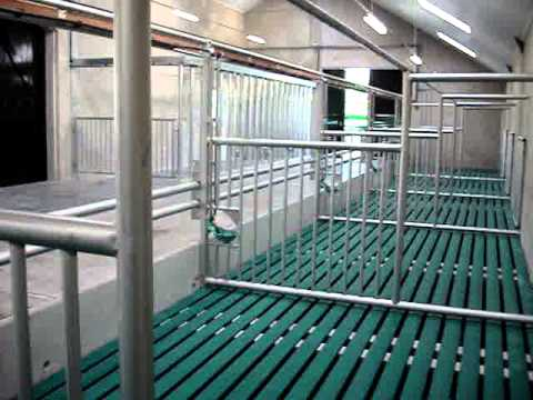 Comfort Slat Mat In Veal Shed Youtube