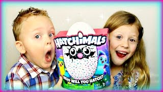 Hatchimals Surprise Egg Opening! Will it Hatch!?