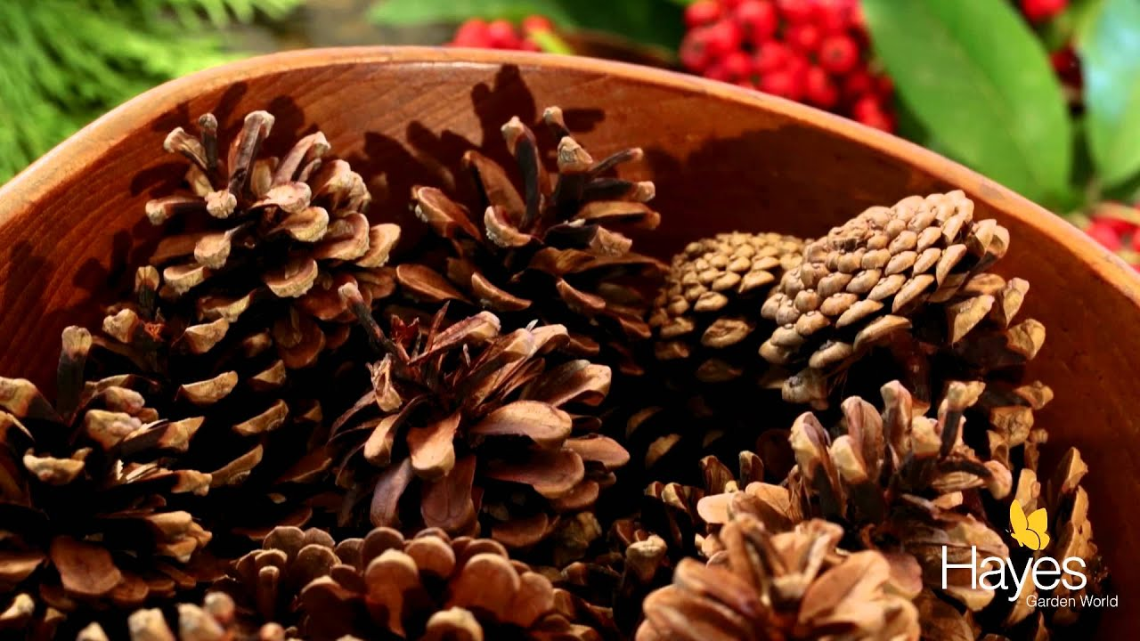 how to make a natural christmas wreath youtube