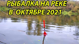 Рыбалка поплавочной удочкой в начале октября 2021 на реке