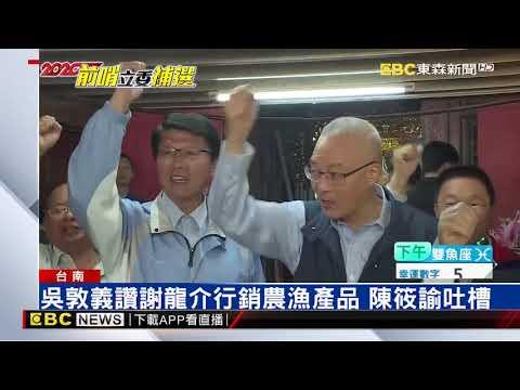 立委補選倒數 台南第二選區藍綠焦土戰