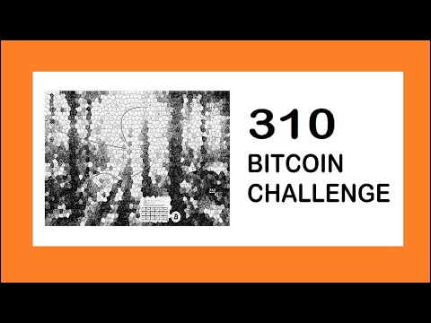 Introducing The 310 BTC Bitcoin Challenge