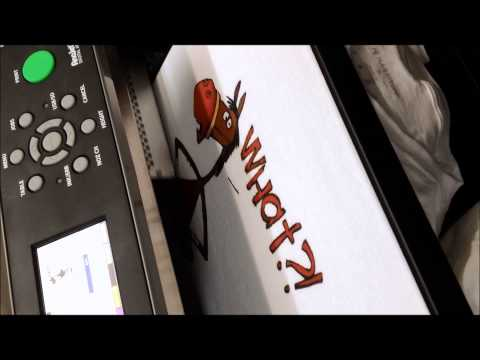 Young's Screenprinting & Embroidery Direct to Garment Printing