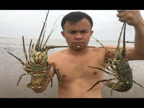 Primitive Technology with Survival Skills looking for food lobster
