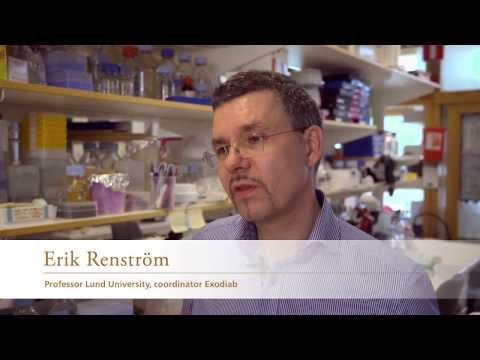 Human Tissue Lab: Helps the researchers find the mechanisms of the insulinproducing betacells