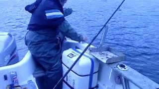 Video Pesca no Vapor - Póvoa de Varzim download MP3, 3GP, MP4, WEBM, AVI, FLV Desember 2017