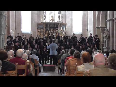 "Pacific Boychoir Academy ""Bogoroditse Devo"" Sergei Rachmaninoff Münster Heilsbronn 09.07.2015"
