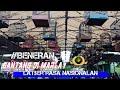 Marlayenterprise Losgan 30 Sejuta Kelas Cucak Ijo Full Gantangan Ngriwik(.mp3 .mp4) Mp3 - Mp4 Download