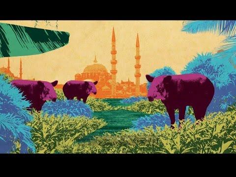 Garadu - Istanbul 2015