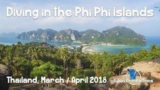 Scuba Diving in Phi Phi Islands, Krabi, Thailand