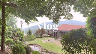 Vlog : 2019 생일주간 ♥️ 수목원 숯 굽는 마…