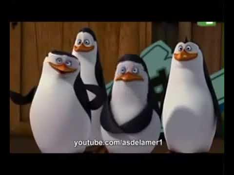 كرتون البطريق المزعج
