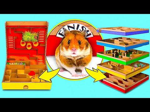 2 DIY Hamster Mazes    5 level Maze And Pringles Can Maze For Active Hamsters