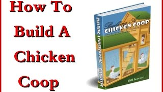How To Build A Chicken Coop   Easy Chicken Coop Plans
