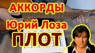Плот Юрий Лоза Аккорды песни Разбор на гитаре Видео урок Текст